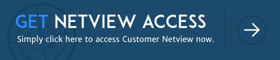 get netview access